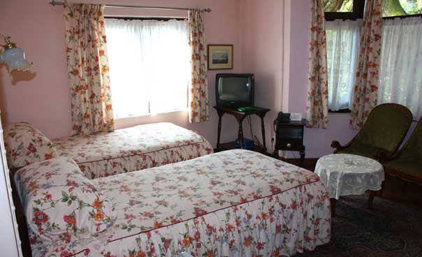 Windamere Hotel Review for families, Darjeeling, India. Twin room.