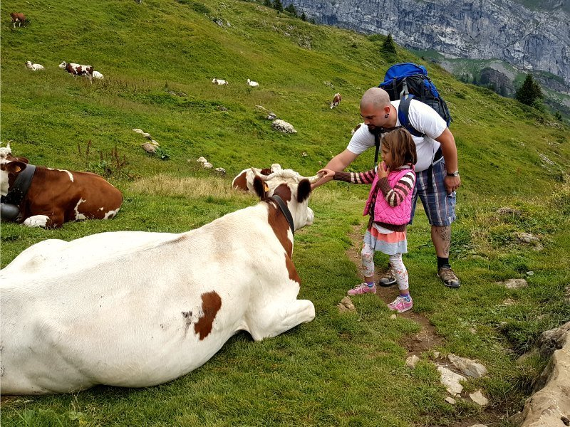 Hiking from Morzine in the French Alps to Refuge de Bostan (Samoëns) with kids