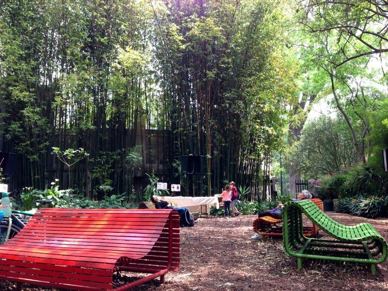 Things to do in Mexico City with Kids