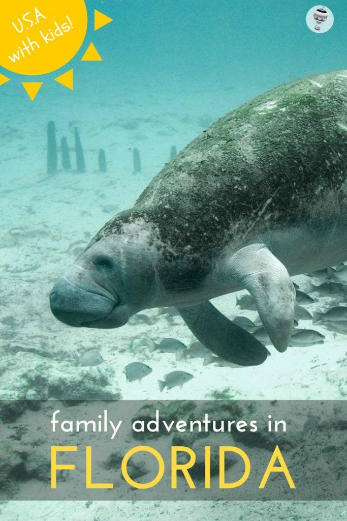 USA with Kids: 6 Family Adventures in Florida
