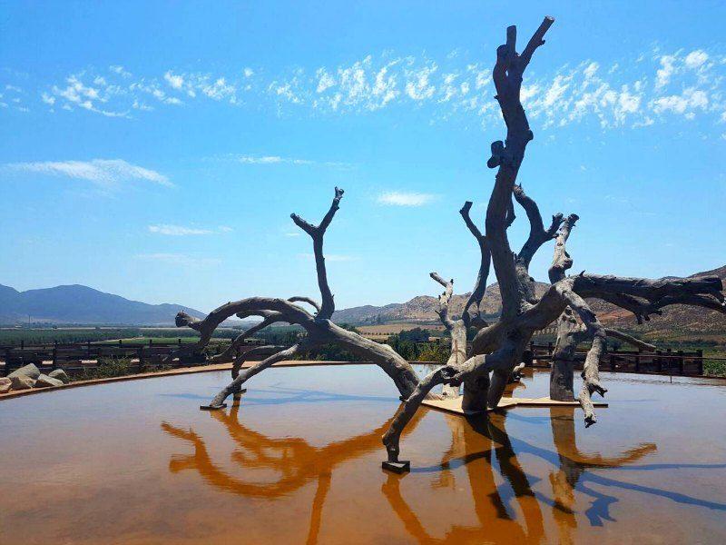 Ensenada Valle de Guadalupe Mexico