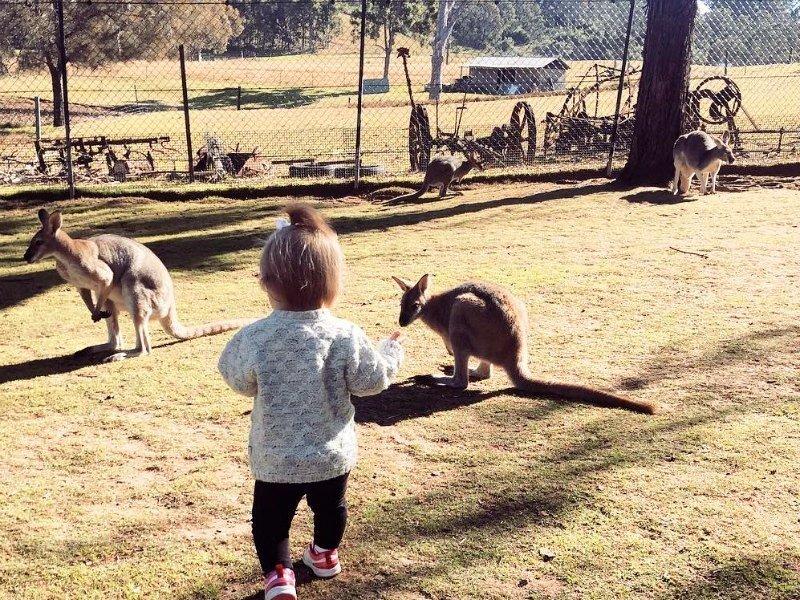 10 Family Nature Escapes in NSW Australia