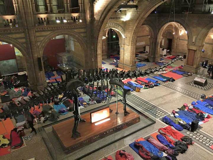 A Night at the Museum: Museum Sleepovers around the world for kids