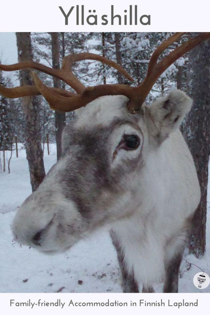 Yllashilla: Family-friendly holiday rental in Finnish Lapland
