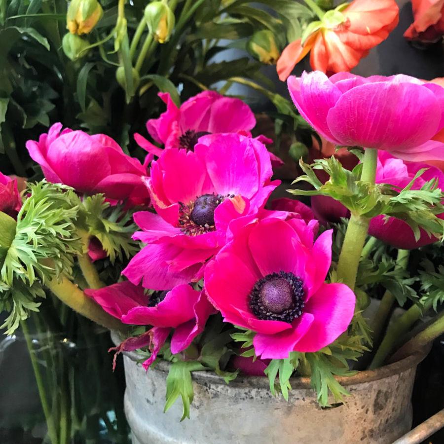 London's best shops: Urban Flower Co.