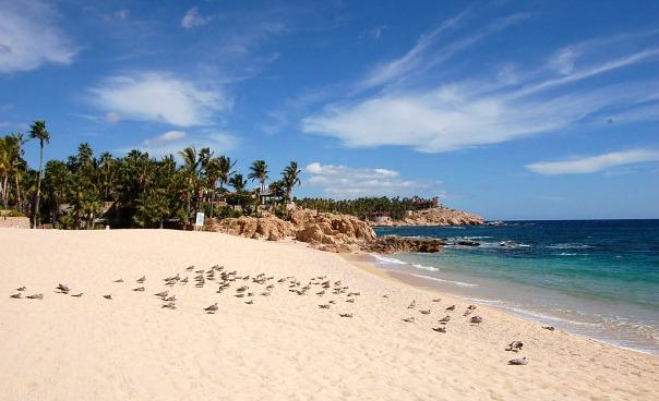 Family Hotel Review: The Bungalows Hotel, Cabo San Lucas, Baja California, Mexico