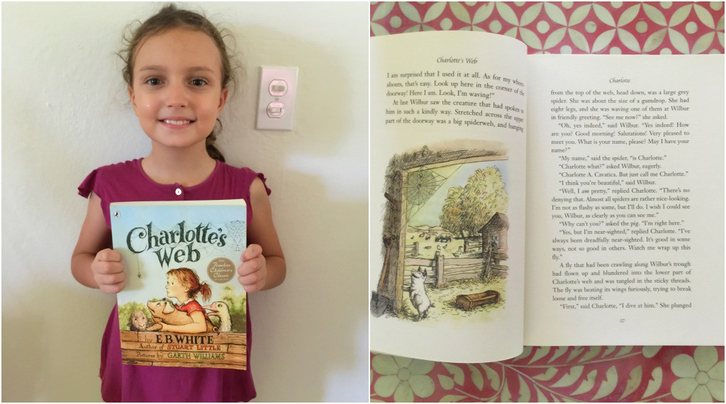 Best Children's Books for Christmas: Charlotte's Web by E.B. White and Garth Williams