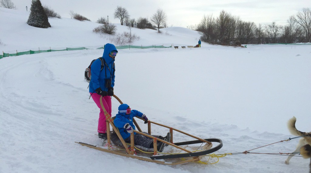 Image of dog sledding at the Quebec Winter Carnival