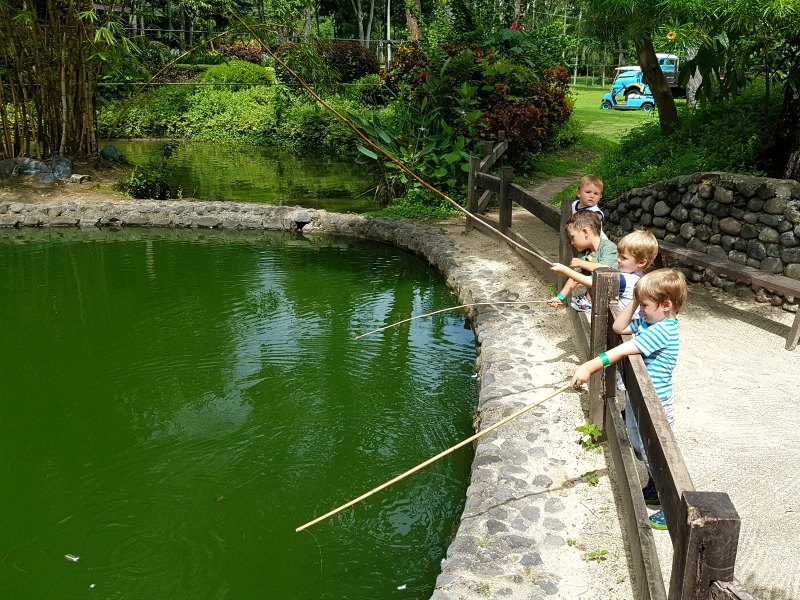 Best day trips from Manila - Fun Farm