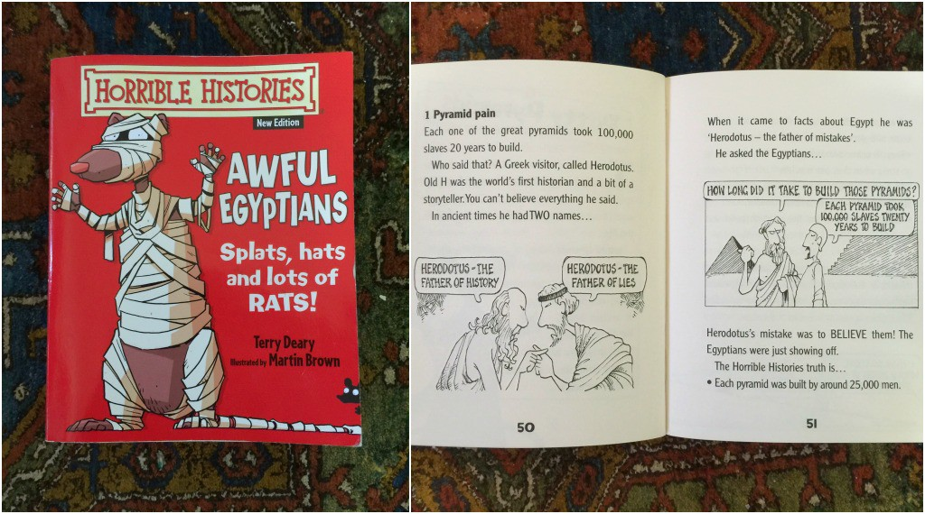 Best Children's Books for Christmas Horrible Histories by Terry Deary and Martin Brown