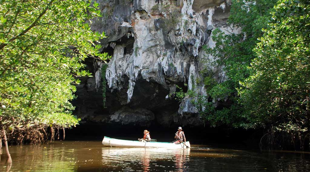 Kayaking-through-caves-and-mangrove-swamps-Chao-Mai