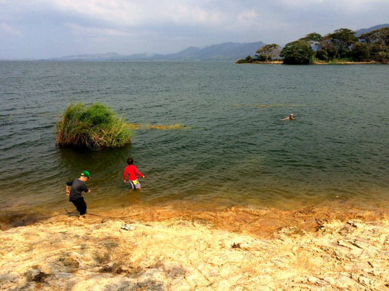 Panama snake adventure: A swim in the waters of Lake Bayano with kids