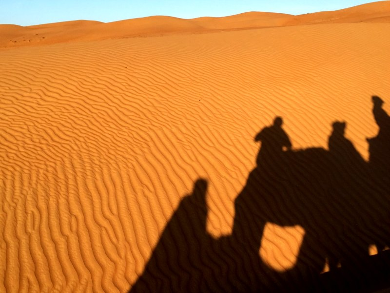 Oman camel shadow: A camel ride in the desert
