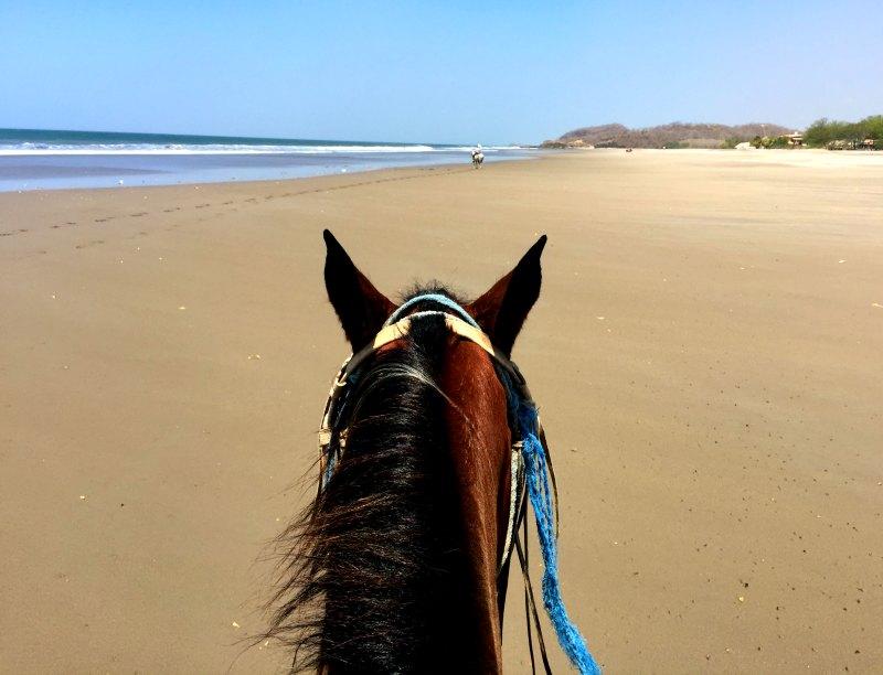 Popoyo horse ride