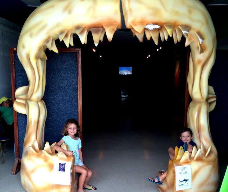 Panama With Kids: The Punta Culebra Nature Centre