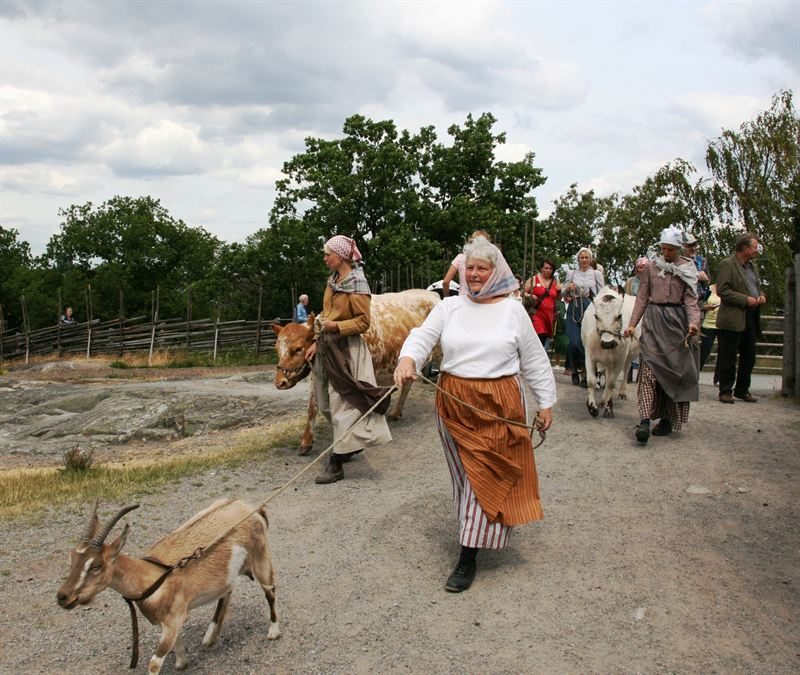 Things to do in Stockholm with Kids: Skansen