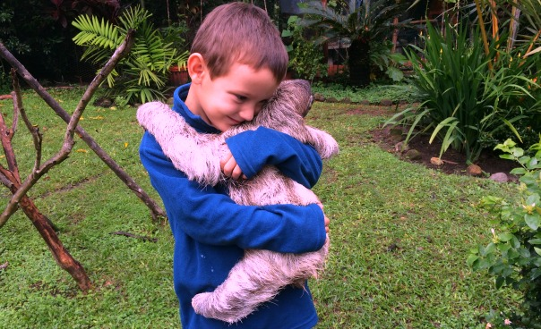 sloth is a friendly animal The abundance of adorable baby sloth photos on the internet recently has led to  an increasing number of people considering sloths as an exotic pet however.