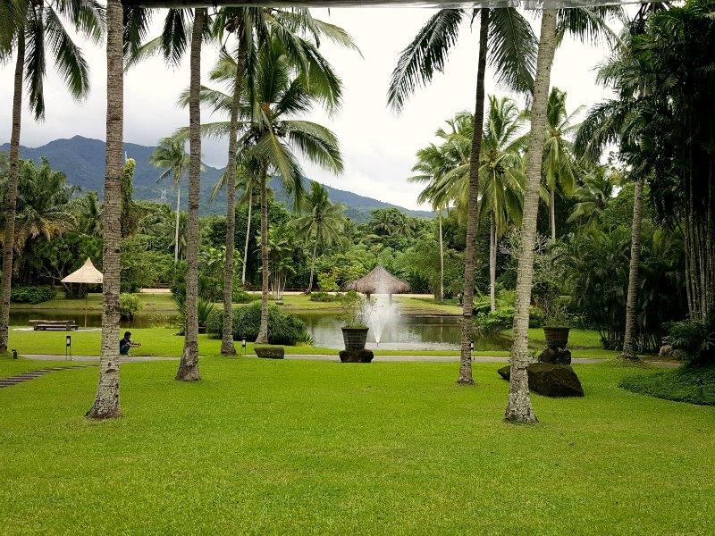 The Farm San Benito garden