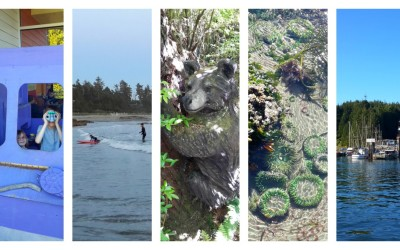 Canada with Kids: 10 Things to do with Kids in Tofino