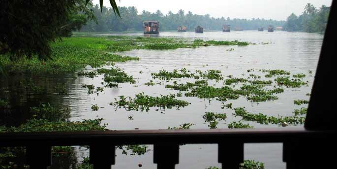 backwaters