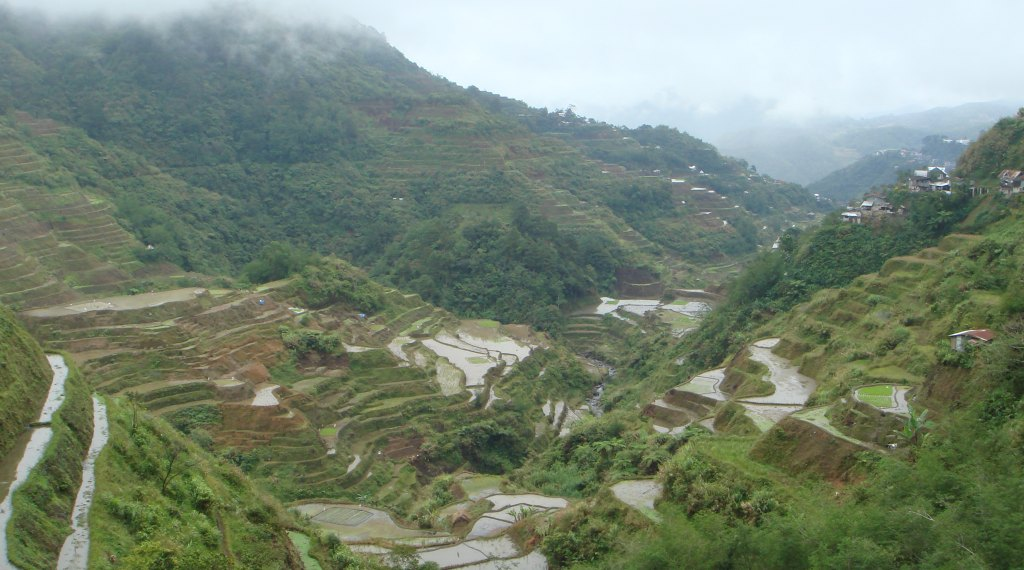 The rice terraces of Batad.