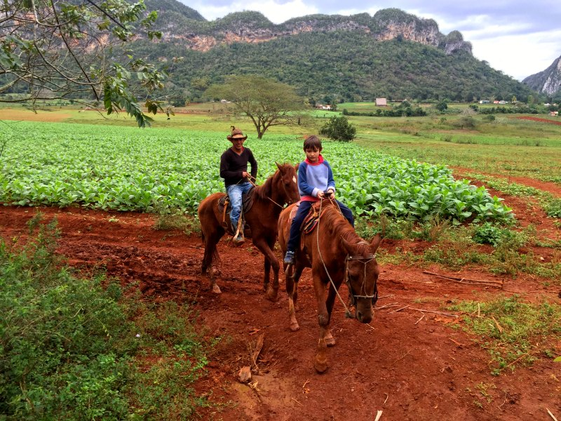 horse riding vinales 3