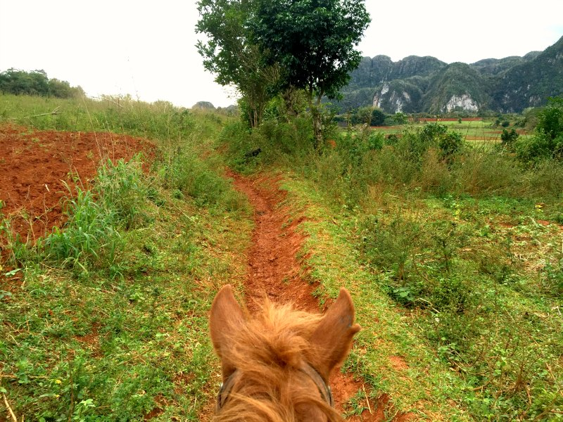 horse riding vinales 4