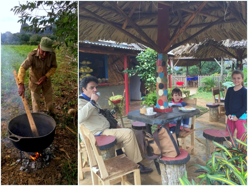 horse riding vinales coffee