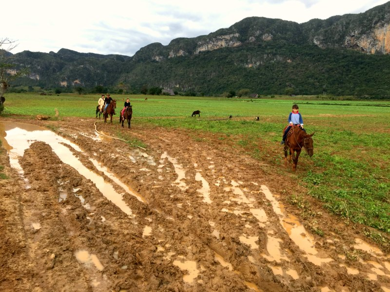 horse riding vinales kids