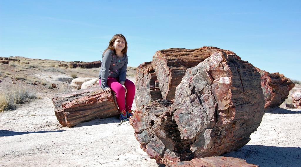 My Family Adventure: Epic American Road Trip