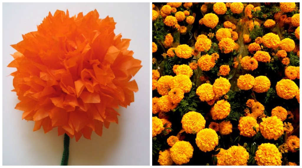 Making marigolds with tissue paper
